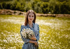 Fonds d'écran Matricaire Bouquet Aux cheveux bruns Les robes Main Alexey Gilev jeune femme