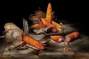 Bilder Mais Stillleben das Essen