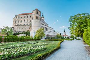 Fotos & Bilder Tschechische Republik Burg Garten Tulpen Strauch Mikulov castle Städte