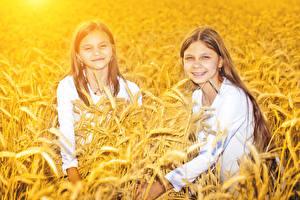 Hintergrundbilder Acker Weizen Kleine Mädchen Zwei Spitze Blick kind