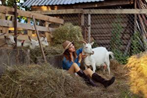 Fotos Hausziege Ziegen Sitzen Heu Stiefel Der Hut Bein Evgenia Pyatnitskaya junge frau Tiere