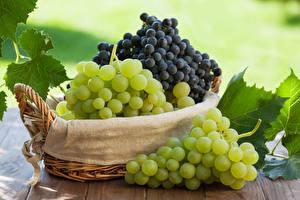 Hintergrundbilder Weintraube Weidenkorb Lebensmittel