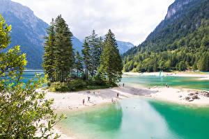 Fotos Italien Berg Wald See Küste Fichten Predil Lake Natur