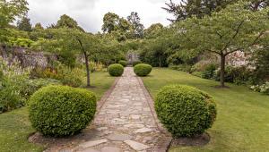 Fotos Park Vereinigtes Königreich Bäume Strauch Rasen Greys Court