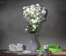 Fotos Stillleben Glockenblumen Törtchen Vase Weiß Tasse Blüte Lebensmittel