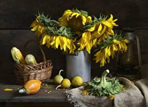 Desktop wallpapers Still-life Corn Helianthus Wicker basket Flowers