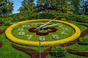 桌面壁纸,,瑞士,公园,時鐘,设计,灌木,草地,Geneva,大自然