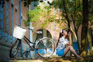 Image Asian Sit Posing Blurred background Bicycles Wicker basket female