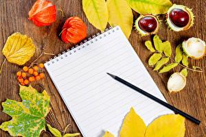 Fotos & Bilder Herbst Beere Kastanien Notizblock Bleistift Blattwerk Physalis Natur