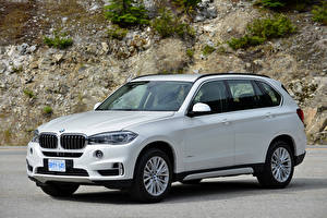 Pictures BMW White 2013-18 X5 xDrive50i Worldwide Cars