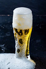 Wallpapers Beer Highball glass Foam Food
