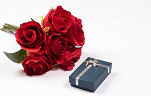 Fotos Sträuße Rose Weißer hintergrund Rot Geschenke Schachtel Blüte