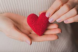 Hintergrundbilder Großansicht Hand Herz