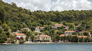 Images Croatia Coast Houses Forest Mljet Island Cities