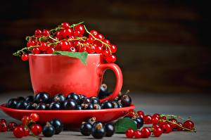 Wallpaper Currant Berry Cup Saucer Food
