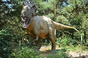 Hintergrundbilder Dinosaurier Tyrannosaurus rex Skulpturen Grinsen