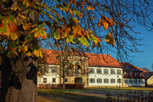 Wallpaper Germany Autumn Palace Branches Monrepos Palace Cities