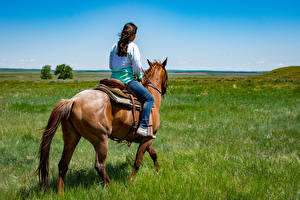 Tapety na pulpit Koń Trawa Siedzą Idzie zwierzę Dziewczyny