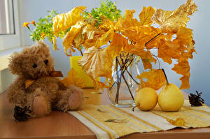 Photo Still-life Autumn Pears Teddy bear Vase Foliage Branches Nature