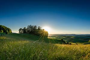 Hintergrundbilder Schweiz Acker Morgendämmerung und Sonnenuntergang Bäume Lichtstrahl