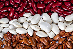 Pictures Texture Many Multicolor Beans Food