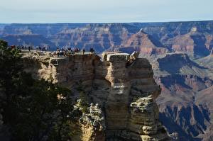Fotos Vereinigte Staaten Grand Canyon Park Canyon Reisender Felsen Arizona Natur