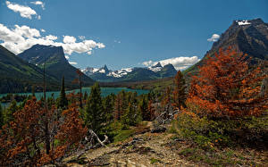 Image USA Park Mountain Lake Autumn Scenery Spruce Saint Mary Glacier NP Nature