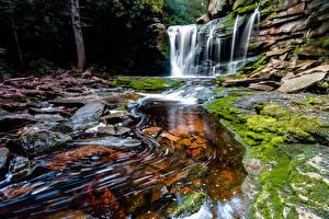 Fotos & Bilder USA Wasserfall Felsen Laubmoose West Virginia Natur