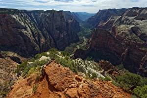 Fotos & Bilder USA Felsen Canyon Zion National Park, Utah Natur