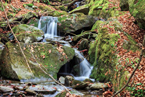 Photo Autumn Stone Foliage Moss Stream Nature