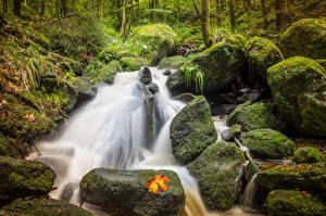 Pictures Autumn Stone Streams Moss Nature