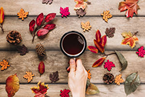 Hintergrundbilder Herbst Tee Bretter Becher Hand Blatt Zapfen Lebensmittel
