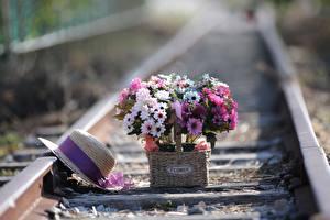 Fotos Blumensträuße Eisenbahn Schienen Der Hut Weidenkorb Blüte