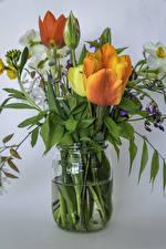 Fotos Blumensträuße Tulpen Narzissen Grauer Hintergrund Weckglas