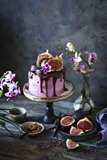 Pictures Cakes Chocolate Ficus carica