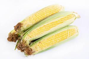 Bilder Kukuruz Hautnah Weißer hintergrund das Essen