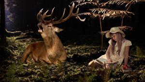 Fotos Hirsche Kleine Mädchen Sitzend Der Hut Buch Horn ein Tier