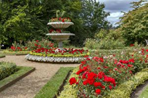 Images England Gardens Roses Shrubs Design Hughenden Manor Garden Nature