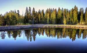 Picture Finland Forest Reflection Saimaa Canal Nature