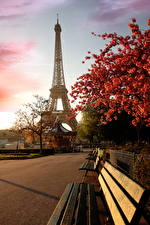 Pictures France Paris Eiffel Tower Cherry blossom Cities