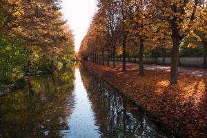 Sfondi desktop Germania Autunno Parco Canale d'acqua Alberi Foglie Garden Schwetzingen Palace Natura