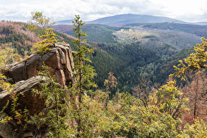 Pictures Germany Scenery Forest Hill Crag Lower Saxony Nature