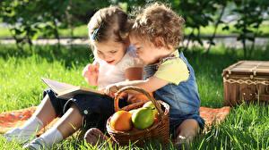 Bilder Gras Zwei Sitzt Weidenkorb Kleine Mädchen Buch Picknick kind