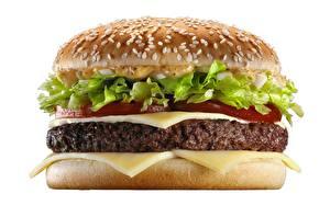 Wallpapers Hamburger Closeup Rissole Cheese White background Food