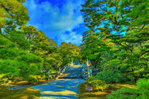 Image Japan Kyoto Gardens HDR Design Stairway Trees Imperial Palace gardens Nature