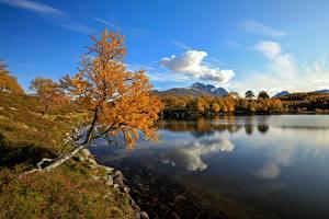 Bilder See Herbst Norwegen Wolke Spiegelung Spiegelbild  Natur