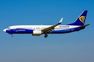 Bilder Verkehrsflugzeug Boeing Seitlich 737-800W, Ryanair Luftfahrt