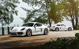 Fotos Porsche Weiß William Stern cayman GT4 automobil