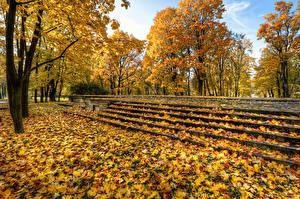 Sfondi desktop Russia San Pietroburgo Parco Autunno Foglie Alberi Scala Park Ekaterinhof Natura