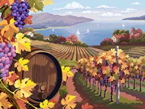 Desktop wallpapers Scenery Vector Graphics Barrel Grapes Fields Vineyard Nature